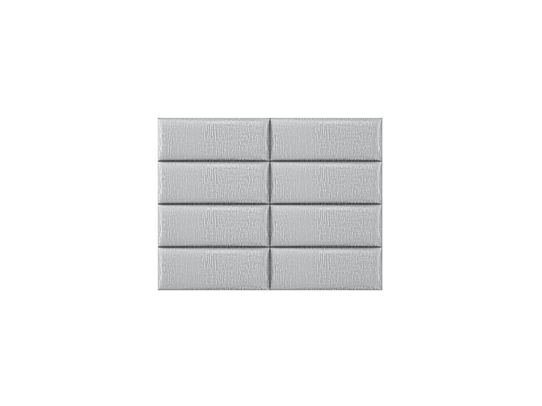 30silver-zebra2x4_3_2