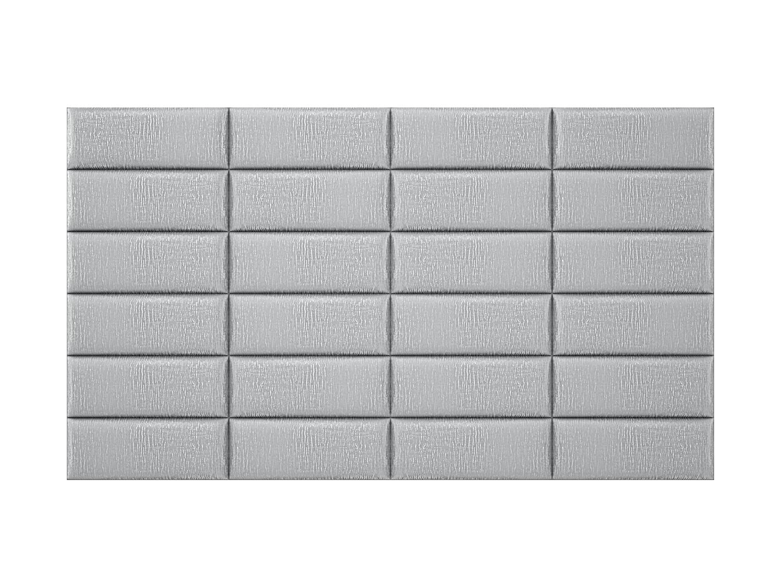 30silver-zebra4x6_6_5