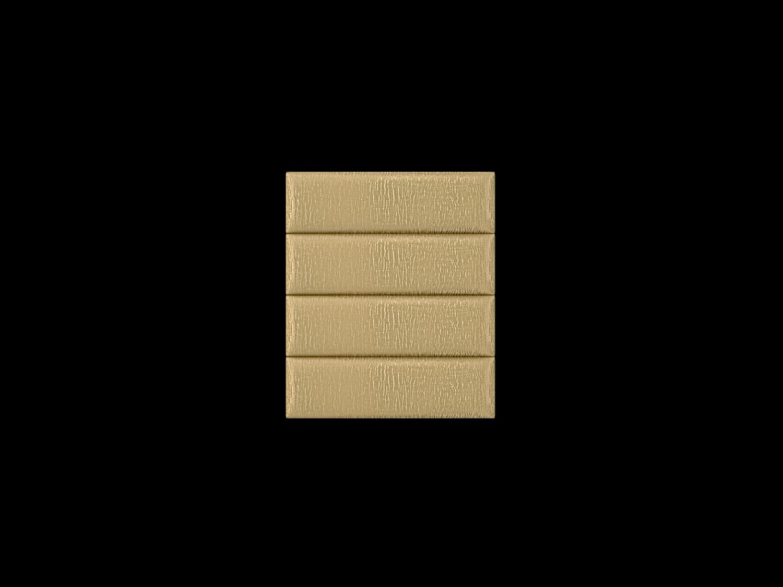 39gold-zebra1x4