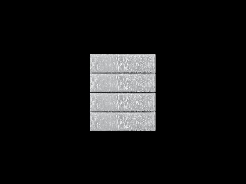 39silver-zebra1x4