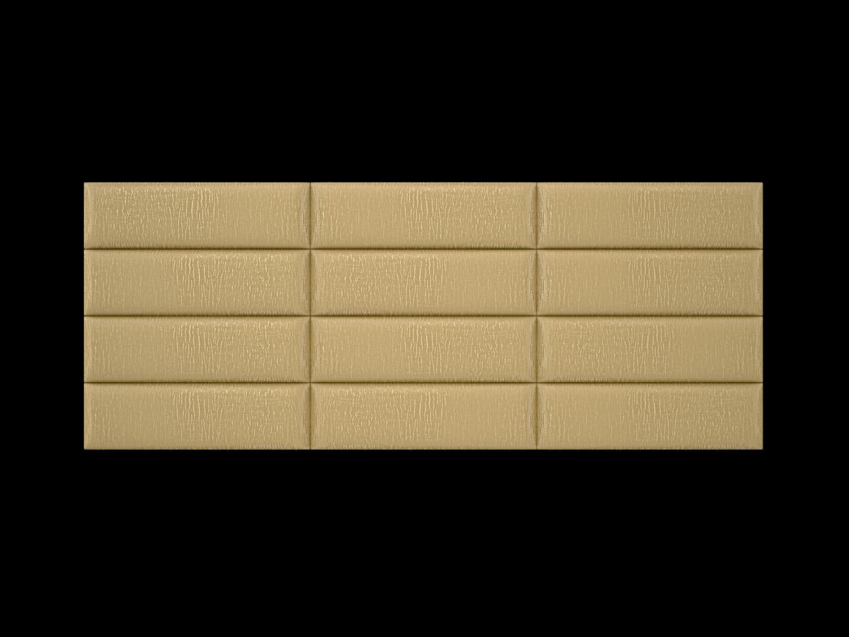 39gold-zebra3x4