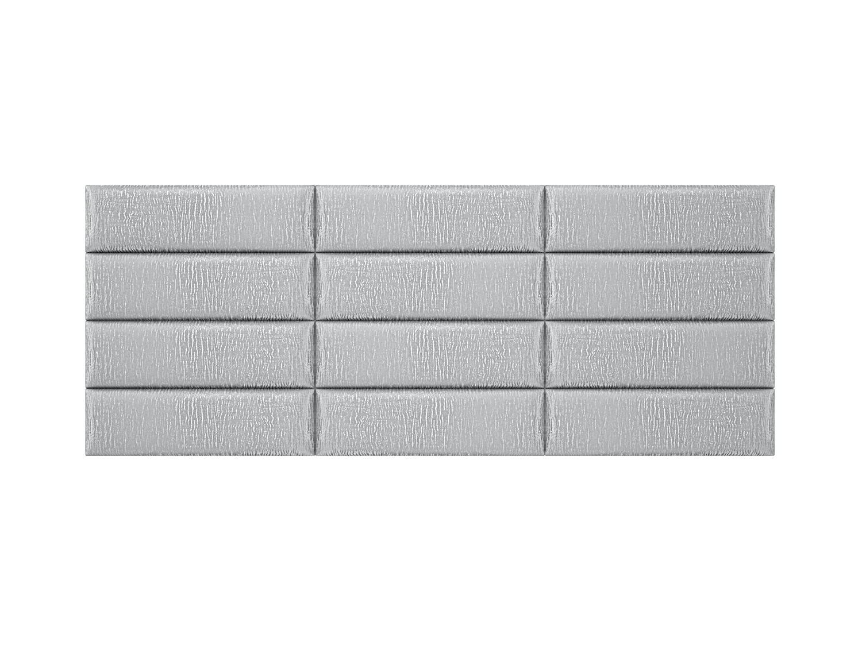 39silver-zebra3x4